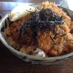 レストハウス 道草 週末のカツ丼