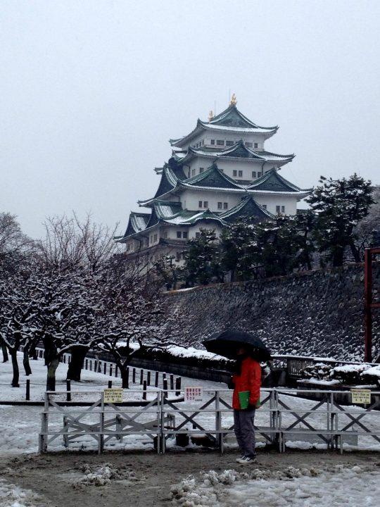 雪の名古屋城(と、ガイドさん)