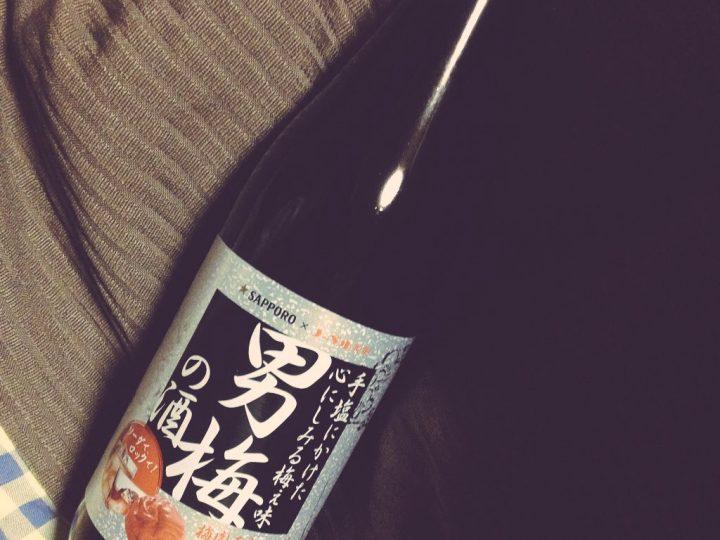 男梅の酒 2017-02-28 003