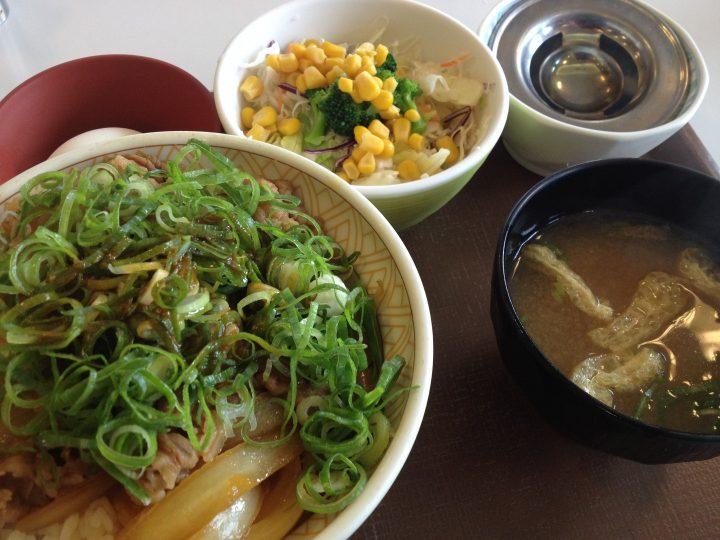 すき家のねぎ玉牛丼大盛り・サラダセット