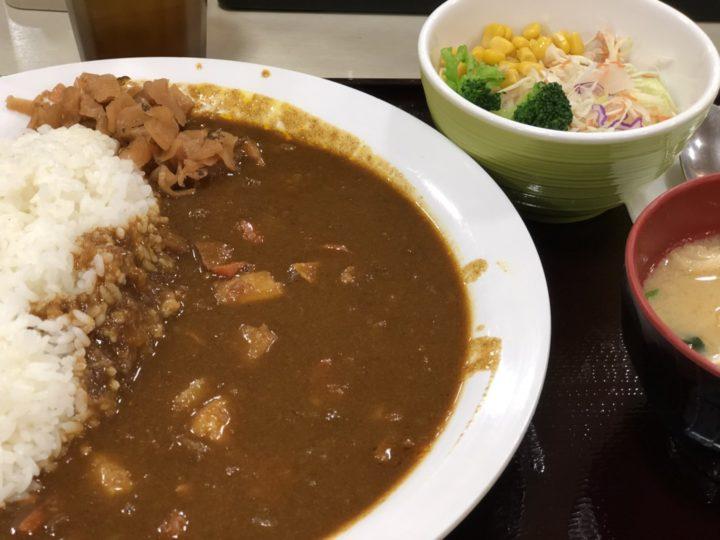 すき家のポークカレーメガ盛り・サラダセット(2018年3月)